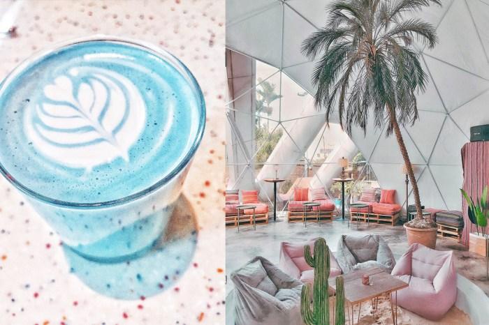 打卡新熱點!隱身台北東區的「玻璃球溫室」爛醉咖啡,進去就不想出來了!
