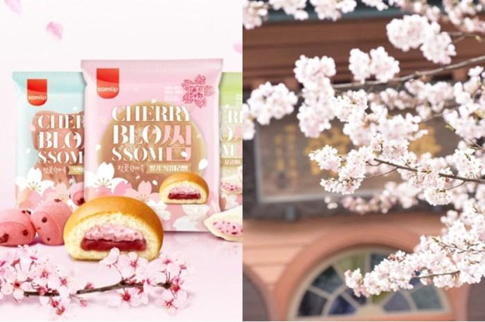 開箱!這款韓國新推出櫻花甜點,讓人有滿滿的幸福感!