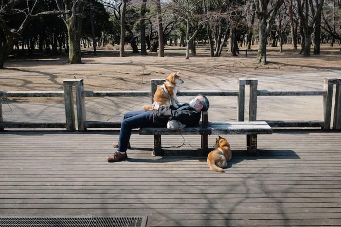 最有共鳴的感覺,不一定只有快樂:從攝影作品看透「孤獨」