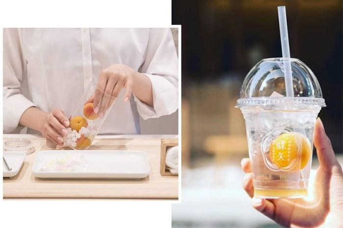 #POPSPOTS in Kyoto:現在京都最熱門的玩意,就是到 CHOYA「蝶矢」體驗釀製梅酒!
