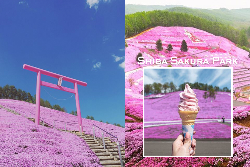 Hokkaido Shiba Sakura Park Japan Travel