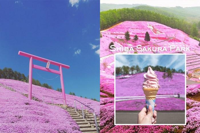 讓白雪化成花海!春夏的北海道,每一處都是絕美的 IG 照背景!