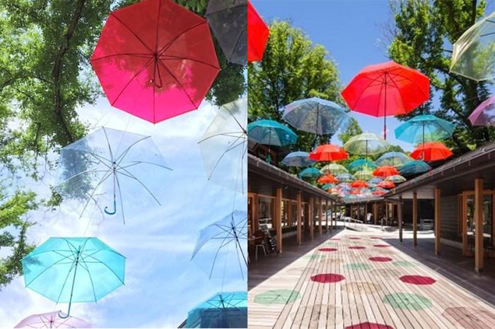 100 把彩色雨傘漫天飛舞!東京輕井澤將舉辦「雨傘天空」期間限定活動