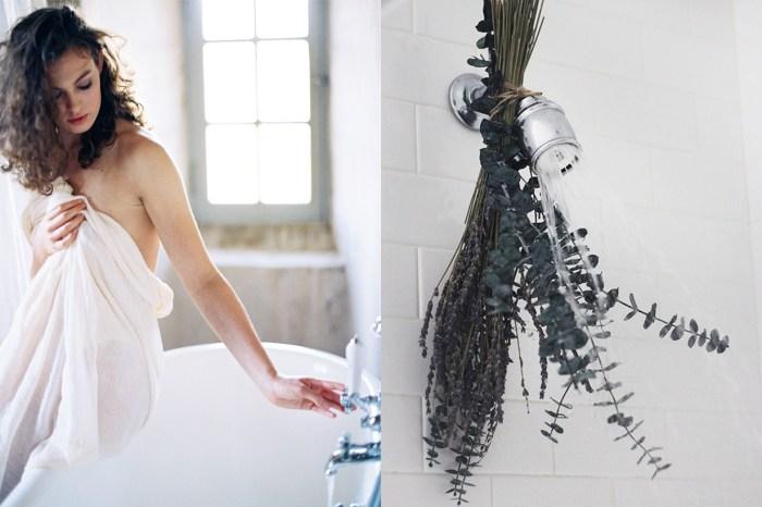 越來越多人愛在浴室掛上一束尤加利葉,到底是為了什麼?