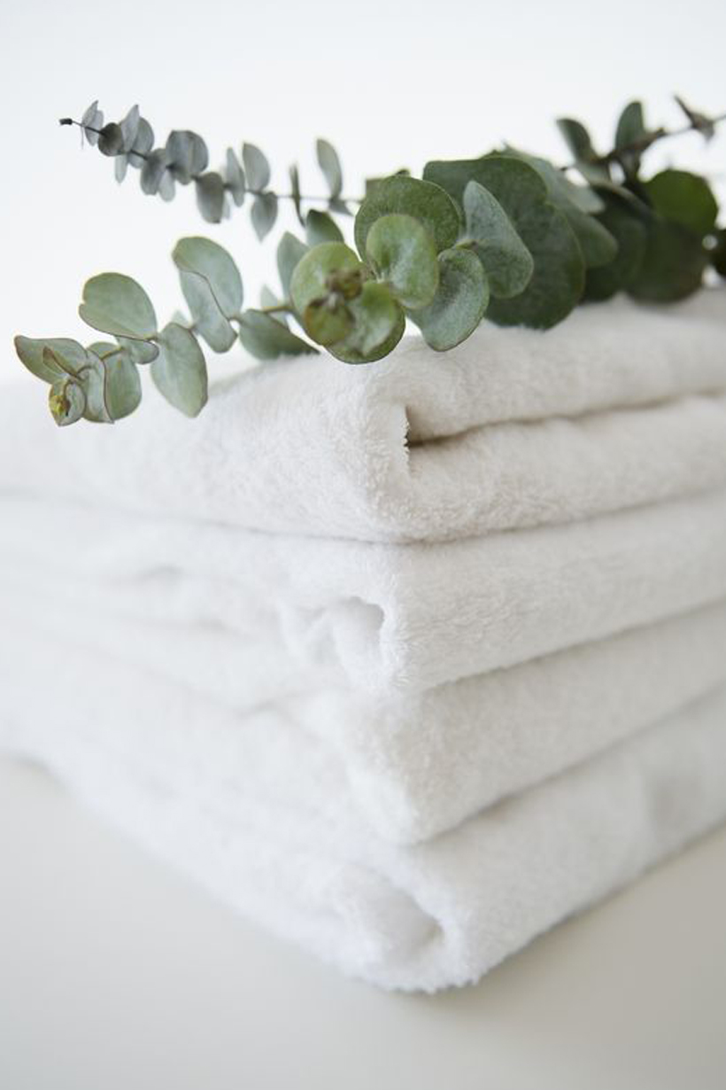 Hanging Eucalyptus in the Shower Pinterest Trending Bathing therapy DIY home Spa relaxing moment
