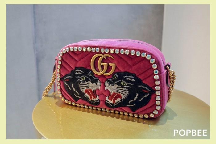 沒時間猶豫的稀有款:Gucci 台灣限定手袋開箱,粉色天鵝絨實在太夢幻!