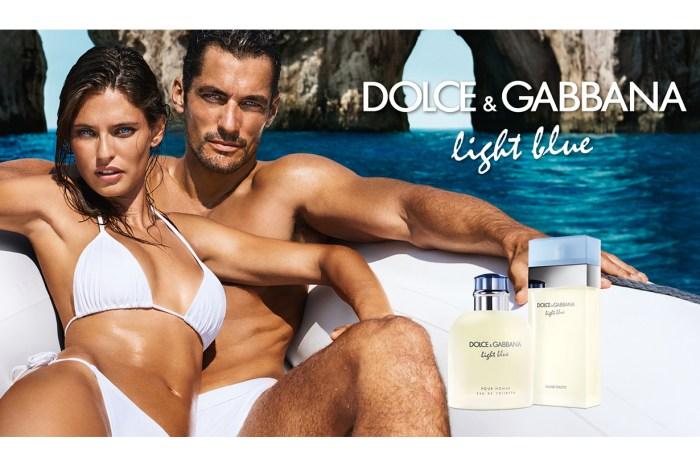 藉香氣遊走地中海!DG Light Blue 香氛組合,誘發盛夏狂熱情懷