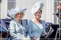 王妃也有婆媳關係考驗!卡米拉竟然曾不想威廉王子娶凱特?