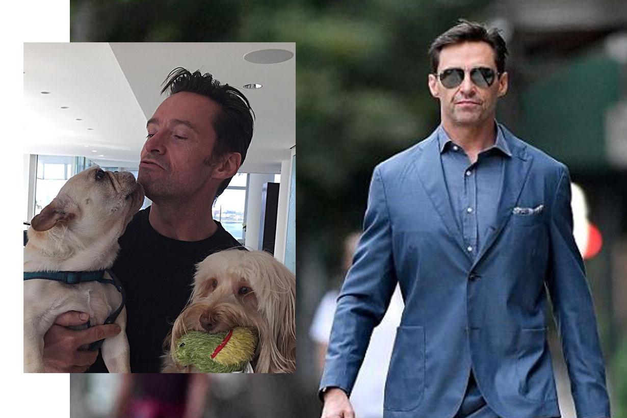 hugh jackman wear suit walk dog