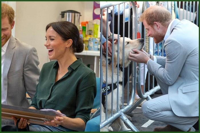 逗得梅根王妃「不顧儀態」大笑,當然是收到與小狗有關的禮物!