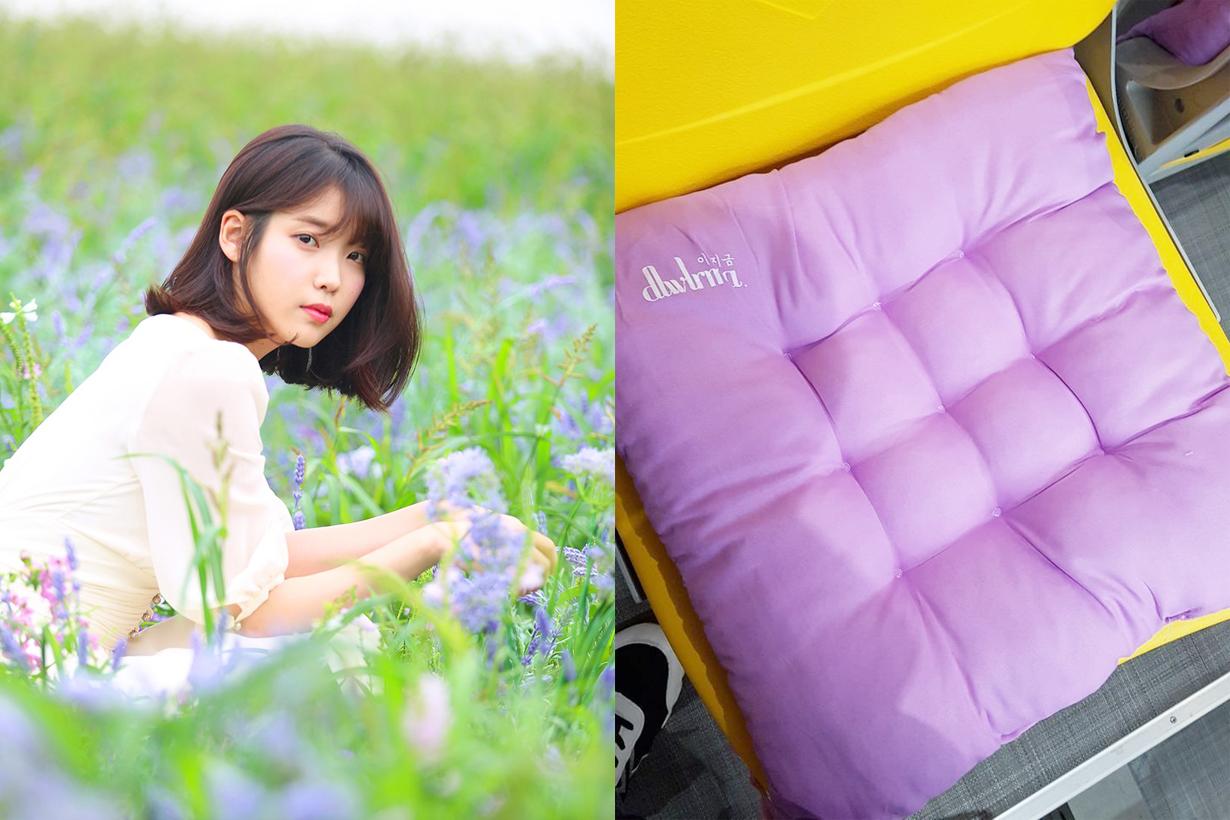 IU Lee Ji Eun 2018 IU 10th anniversary tour concert dlwlrma IU mother concert souvenir gift purple cushion k pop korean idol singer celebrities