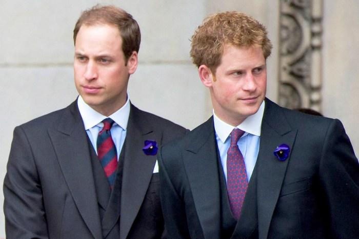 氣哥哥不夠歡迎梅根!有介蒂的不是凱特兩妯娌,而是威廉哈里兩位王子!