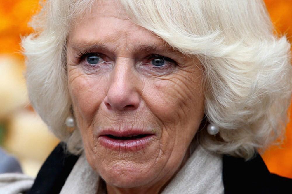 Camilla Crying Moment