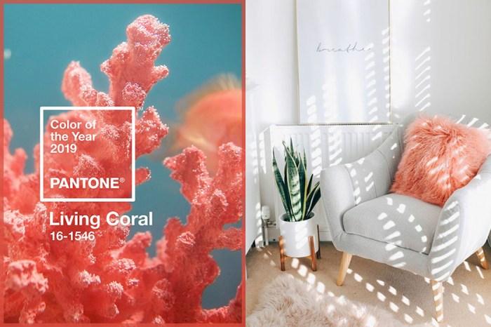 精選 10 件 Pantone 流行色家品,為家居注入一抹「珊瑚橘」暖意!