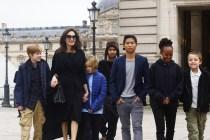 「爸爸從來沒想過領養你!」Angelina Jolie 一句,讓 Brad Pitt 跟兒子關係破裂!
