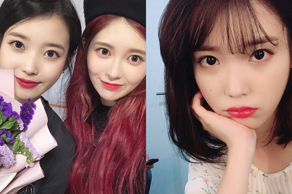 IU Lee Ji Eun Dia Baek Ye bin Haters netizens K Pop korean idols celebrities singers comments