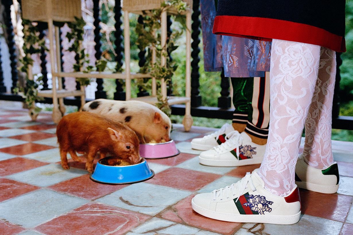 gucci-chinese-new-year-pig-lookbook