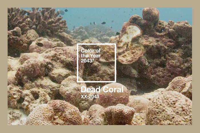 這才是地球現在的模樣:提前發表 2043 年 Color of The Year 「死珊瑚」