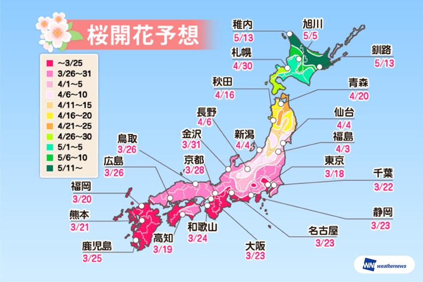 japan sakura prediction travel