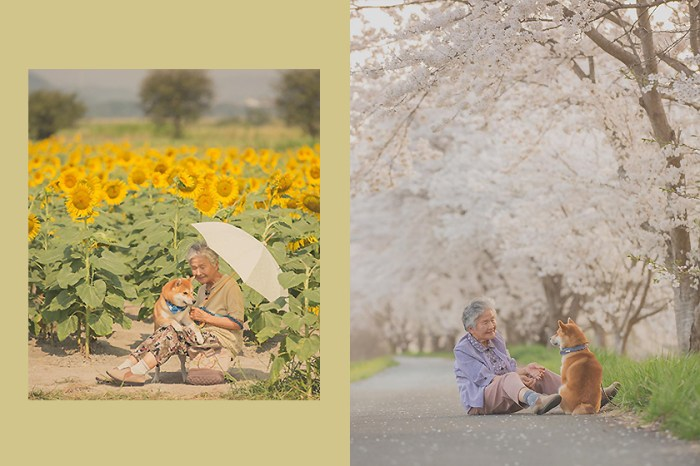 時間再也偷不走:日本孫子為祖母紀錄一張張生活照,只願人生不再有遺憾!