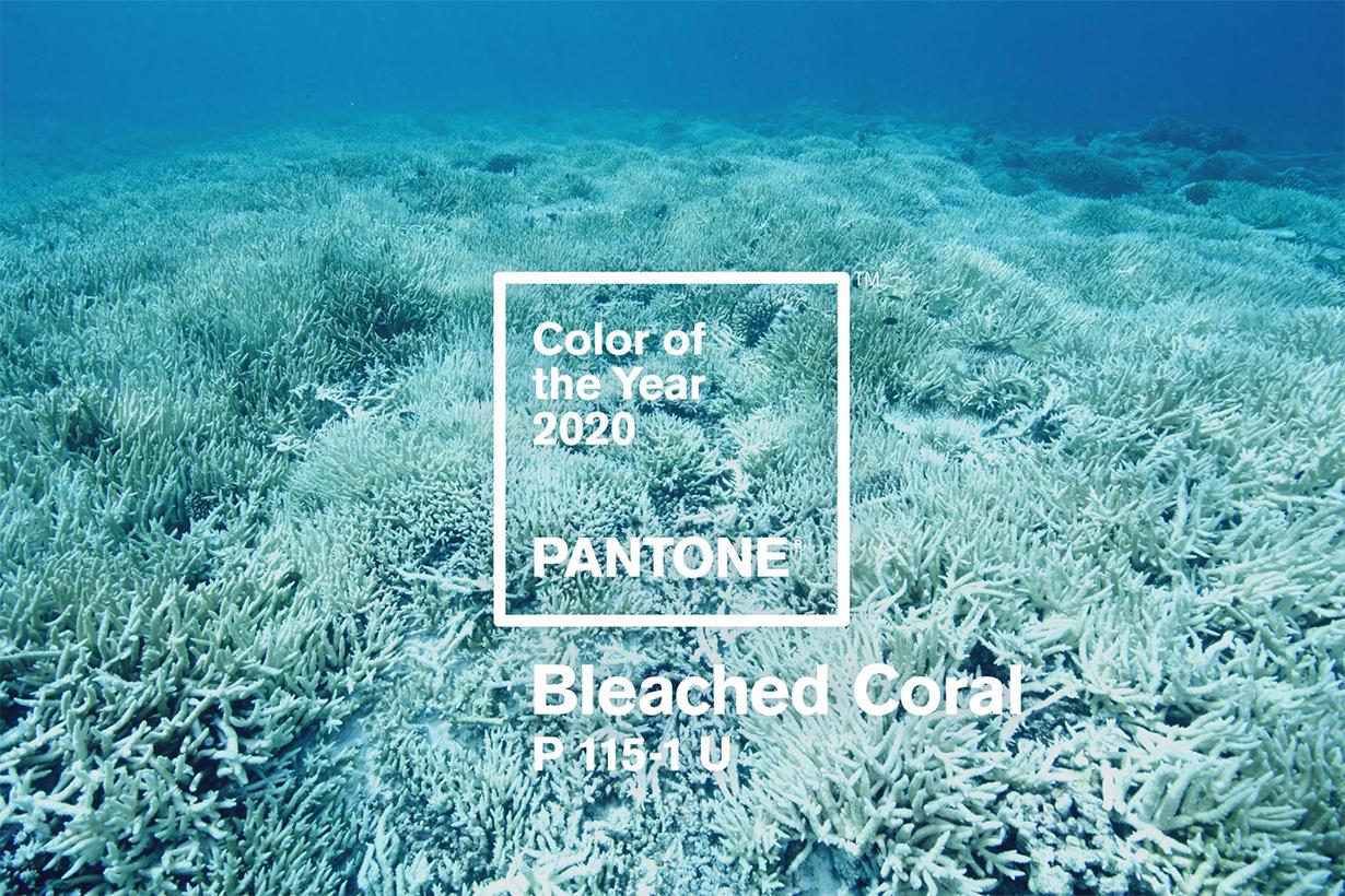 Pantone Colour 2020 Bleached Coral