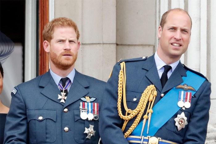 「沒有人願意支持…」兩位王子做了甚麼,而被一眾名人請吃閉門羹?