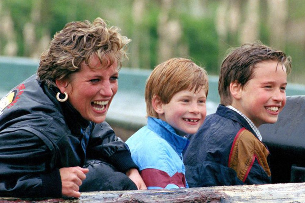 Princess Diana Prince William Prince Harry Family