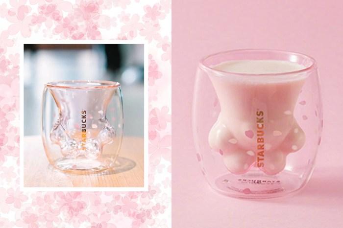 瞬間掃光:Starbucks 的這款「櫻花貓爪杯」,超萌造型讓貓奴們瘋狂了!