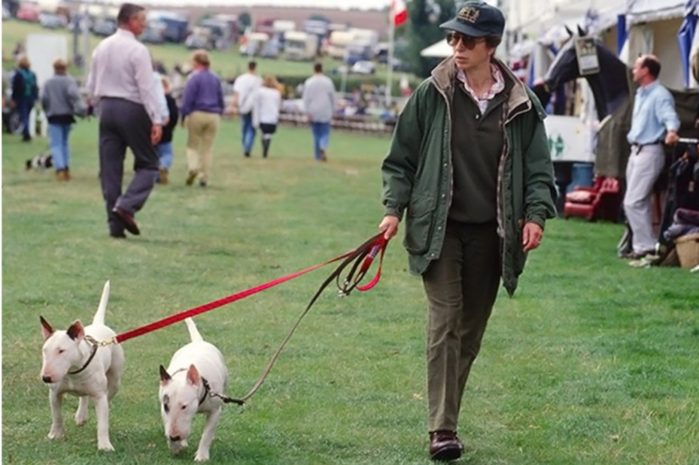 Princess Anne British Royal Family Members Queen Elizabeth Prince Charles Prince William Prince Harry Kate Middleton Meghan Markle criminal record dog attacked children dangerous dogs act english bull terrier dotty