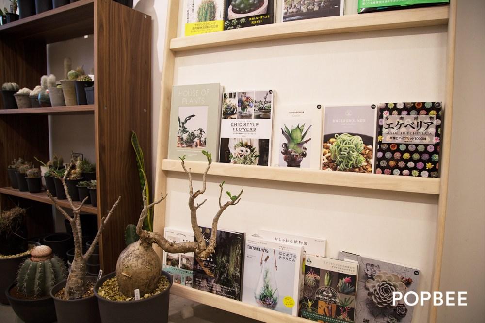 green-egg-store botanical-stor 香港多肉植物店