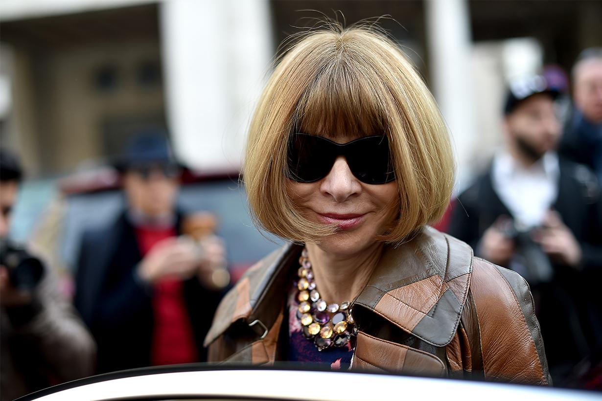 Anna Wintour Comments About Fur