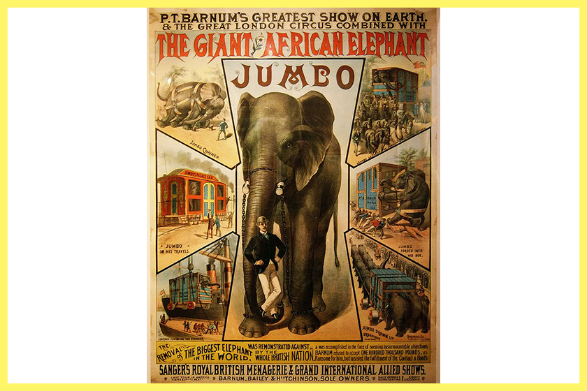Disney Dumbo tragic true story jumbo