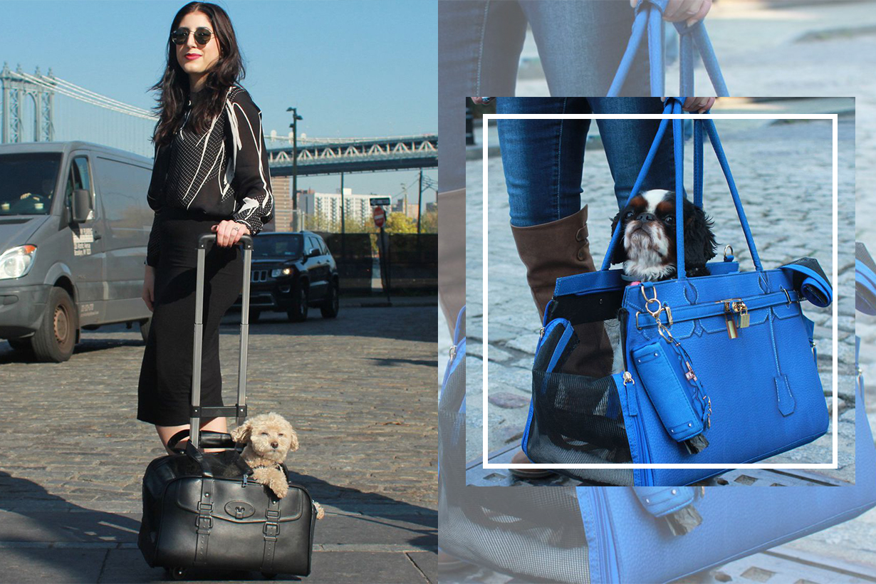New York Brand A Pet With Paws has the most stylish bag for pets