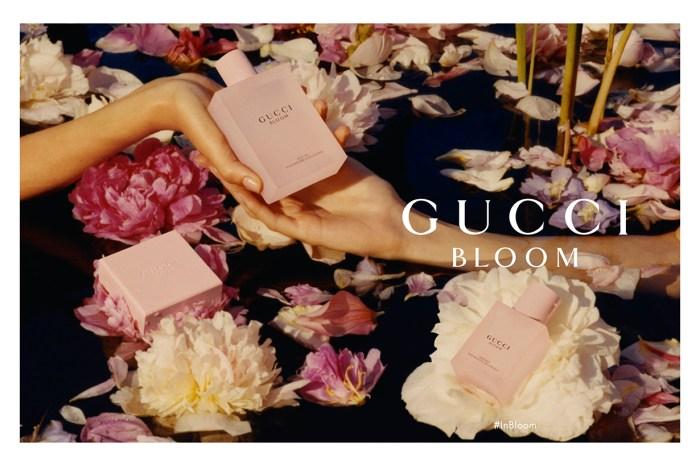 時尚達人也愛的高顏值香水!Gucci Bloom Gocce di Fiori 淡香氛要來俘虜你的心了!