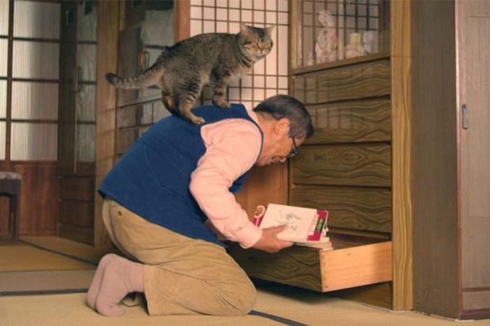 噴淚之作!改編自日本大熱漫畫,《爺爺與貓》帶出貓奴必有共嗚的話題!