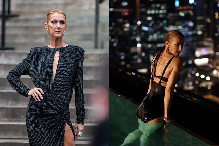 Celine Dion is an ambassador for L'Oréal Paris