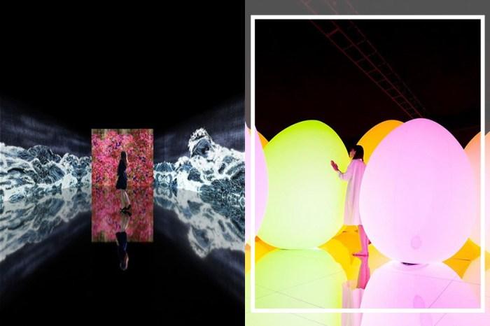 「teamLab:生命之森與未來遊樂園」登陸廣州!全新展品跟深圳、澳門站的大不同!