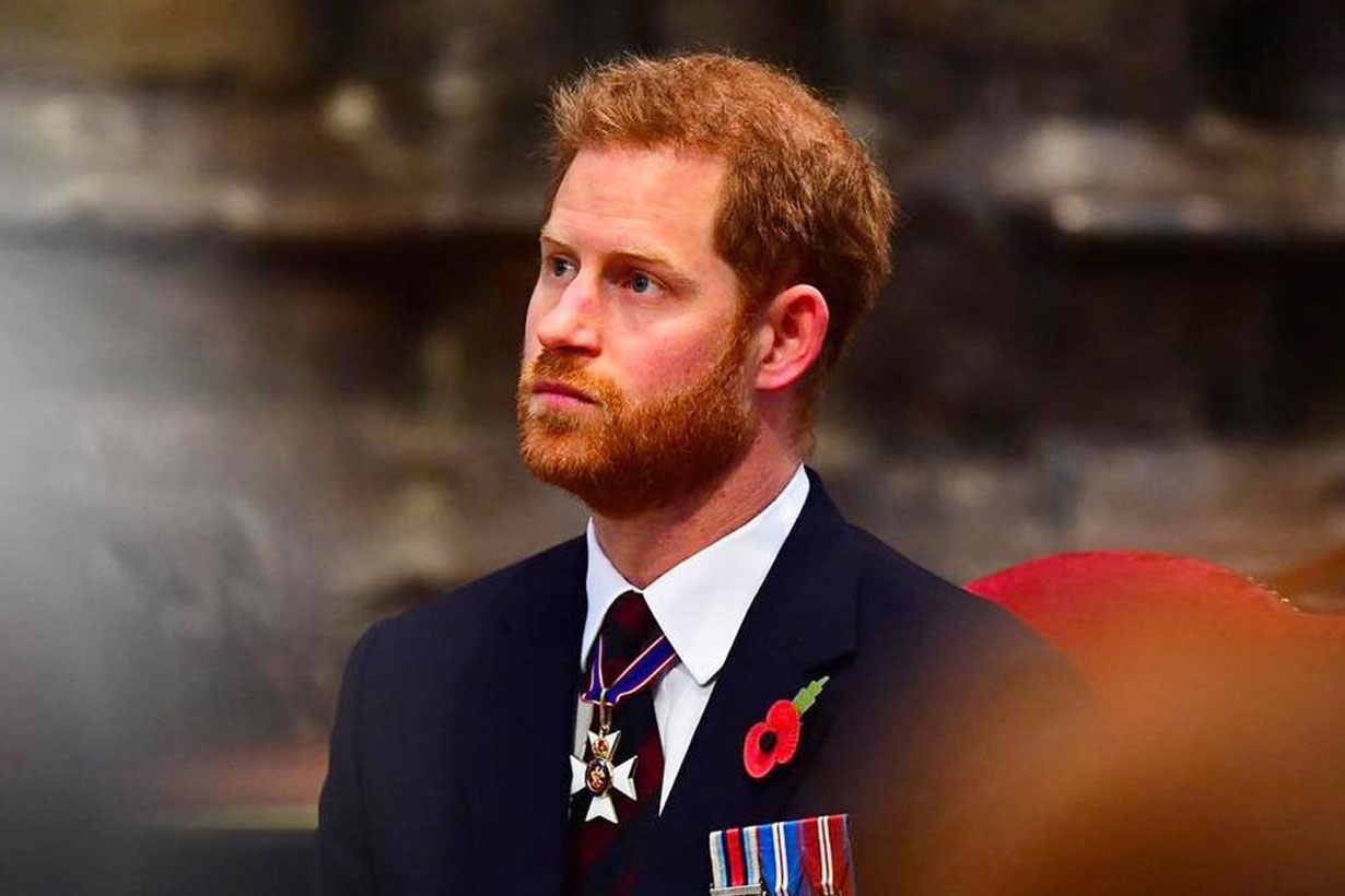 Prince Harry cancel Netherlands trip
