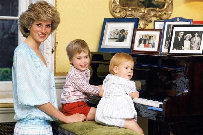戴安娜王妃致命車禍成主題公園景點!網民大怒:有考慮到威廉與哈里王子感受嗎?