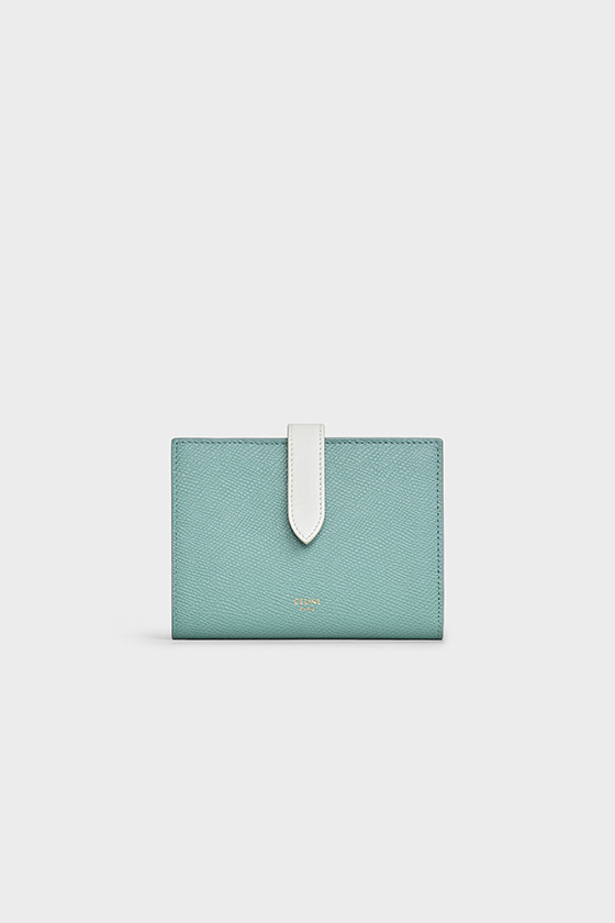 celine hedi slimane handbags 16 celadon new color
