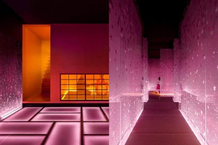 宛若走進美術館:在上海老樓中,藏著一間正在下著「櫻花雨」的日本餐廳!