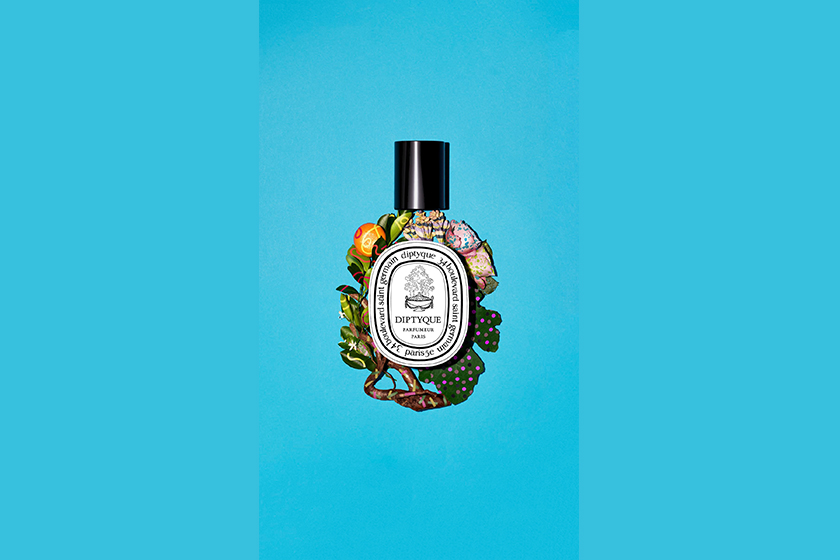 diptyque Raw Materials In Colors 2019 perfume