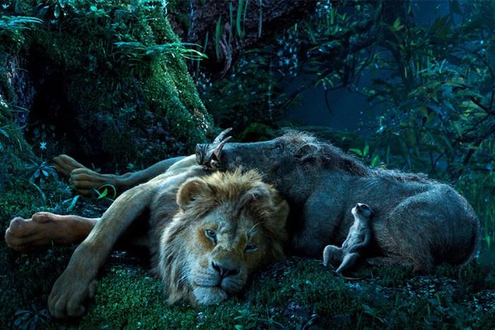 終於聽到《Hakuna Matata》!難怪這條真人版《獅子王》宣傳片立即被瘋傳