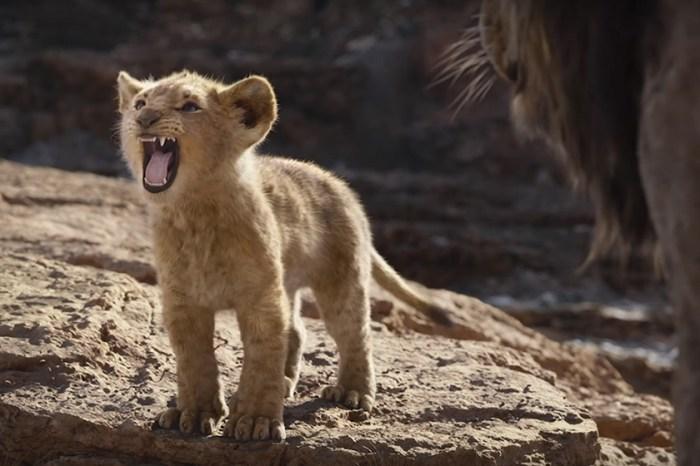 誤會大了!《獅子王》一開首這幾句非洲語並不止「獅子來了」這麼簡單!