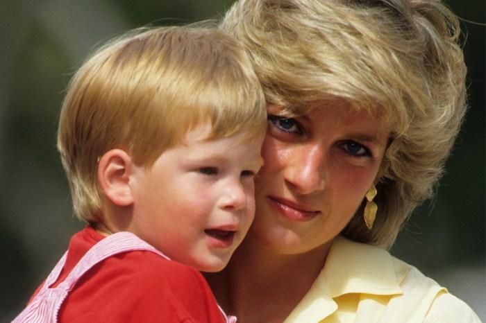 30 年後哈利王子重遊母親探訪地, 看到戴安娜王妃照片後做出貼心之舉