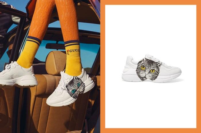 Gucci 這款印有「貓臉」的復古老爹鞋,一曝光便引起貓奴們蠢蠢欲動!