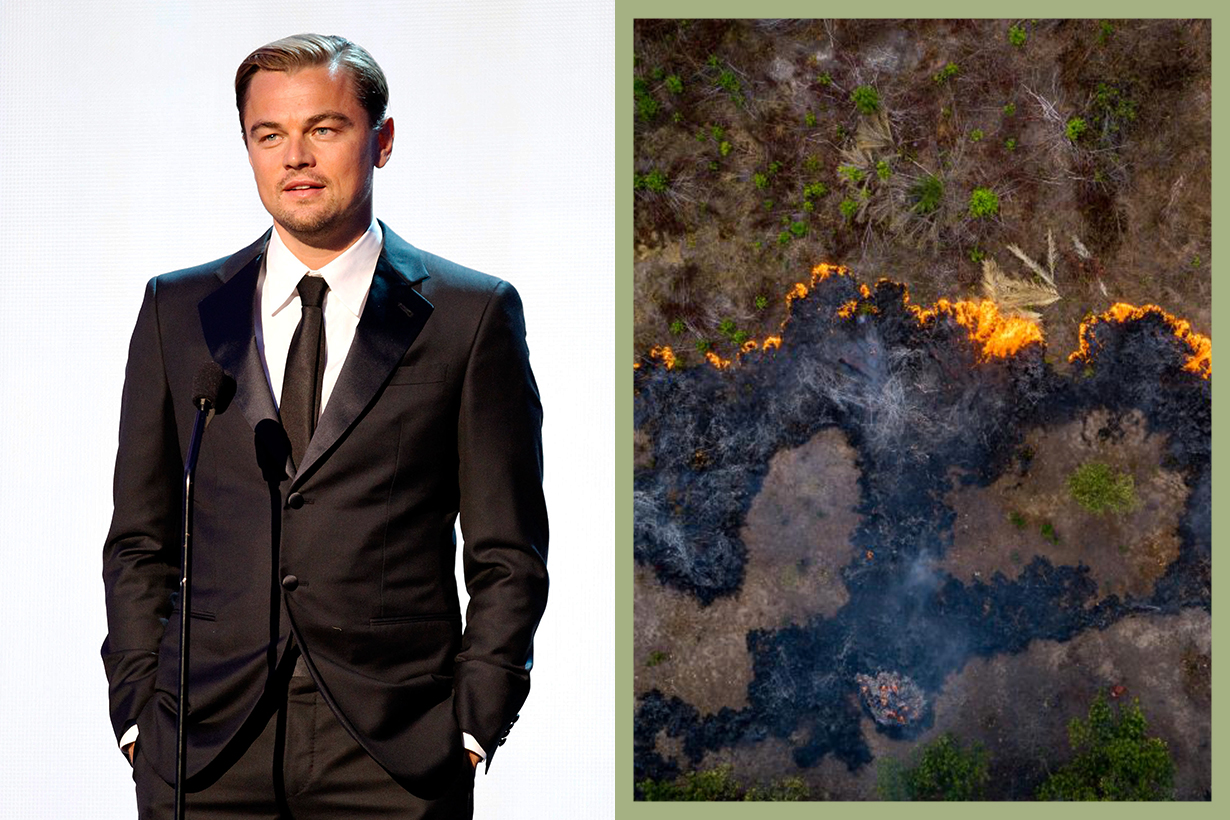 Leonardo DiCaprio pledges £4 million towards the Amazon fires