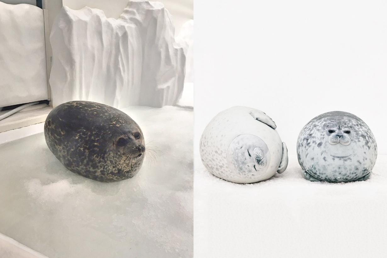 wamo pillow osaka cute seal japan