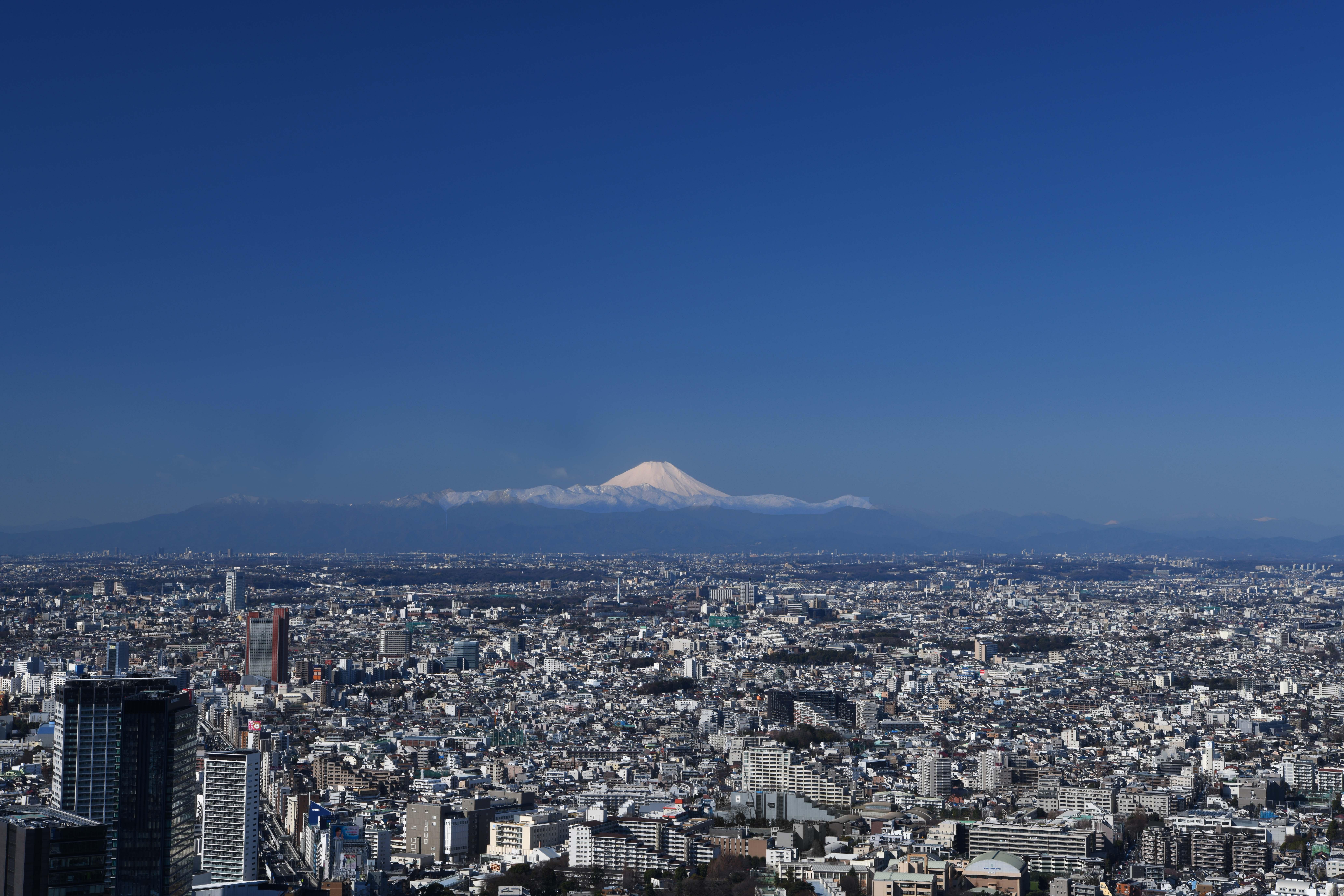 shibuya sky tokyo new landmark night view fuji mountain
