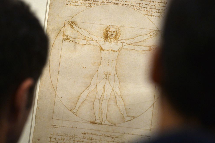 leonardo da vinci vitruvian man drawing the louvre exhibition